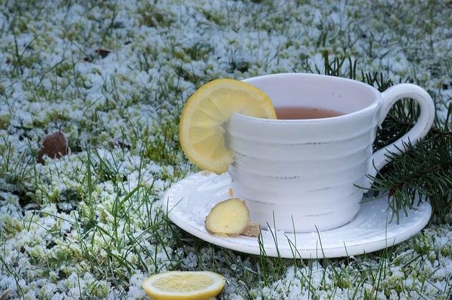 zázvorový čaj v šálku s citronem